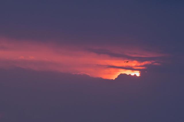 1d3_6711_sunset_2