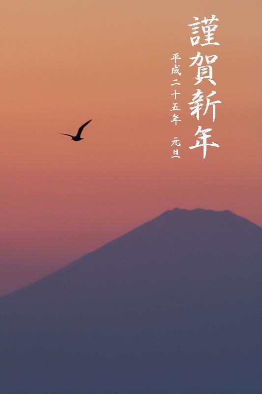 1d3_8601_2013_nenga